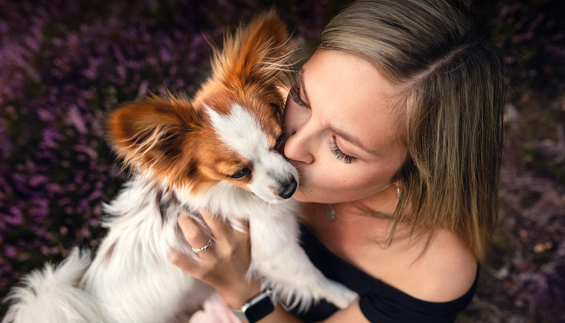 hund und mensch fotografie