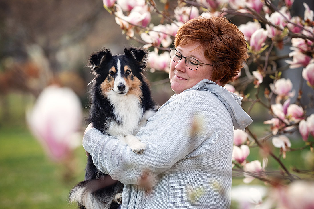 hunde fotoshooting sheltie magnolie